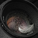 Water lens Stock Photos