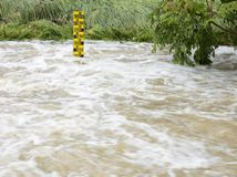 Water Level. At an overflowing river royalty free stock images