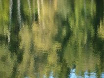Water level of the pond. South Bohemia royalty free stock images