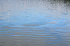 Water level of the pond Stock Images