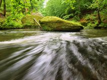 Water level under fresh green trees at mountain river. Stock Photo