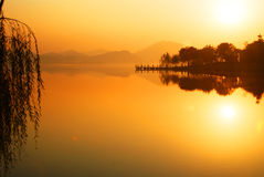 Water lian lake breeze light. Chinese Guangdong Dongguan Shui Lianhu dawn. Golden color Chaoyang dyes the level of the lake golden yellow Royalty Free Stock Image