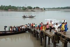Water life of Sundarban Stock Photo