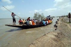 Water life of Sundarban Stock Photos