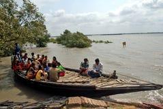 Water life of Sundarban Royalty Free Stock Image