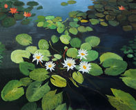 Water Lilies. Colorful pond with beautiful water lilies and the sky reflection on the water surface, painted on the canvas by me, Kiril Stanchev Royalty Free Stock Image