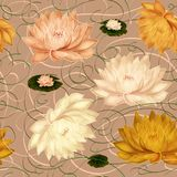 Water Lilies on a Beige Background royalty free stock images