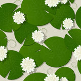 Water lilies design Stock Images
