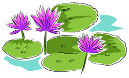 Water lilies. On a pond line art clip art design Stock Images