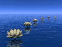 Water lilies steps - 3D render Stock Photos