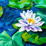 Water Lily. Original oil painting of beautiful water lily(Nymphaeaceae) on canvas.Modern Impressionism Stock Photo