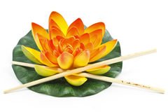 Water lily flower Stock Photography