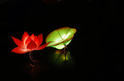 Water lily lantern. In China, the festival of lanterns, people used to watch lanterns. This latern is for a water lily with leaves, inverted reflection in water Stock Photography