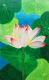 Water Lily Painting Royalty Free Stock Photos