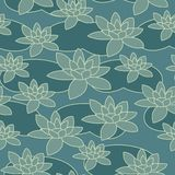Water-lily pattern Stock Photos