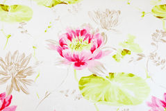 Water Lily. Pink water lily with green leaves on a white background Royalty Free Stock Image