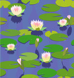 Water lily in pond Stock Images