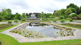 Water lily pond and ornamental courtyard in Munich Botanic Garden Royalty Free Stock Images