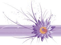 Water lily vector background. Vector decoration with water lily Stock Photo