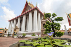 Water lily at the Wat Pho temple in Bangkok Royalty Free Stock Images