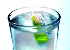 Water with Lime. A photo of water with lime Royalty Free Stock Image