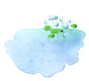Water lotus blooming flowers in the pond. Watercolor hand drawn illustration Royalty Free Stock Images
