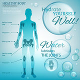 Water Lubricate Joints. Water is the driving force of all nature. Vector illustration of bio infographics with human body scheme in transparent style. Medicine Royalty Free Stock Image