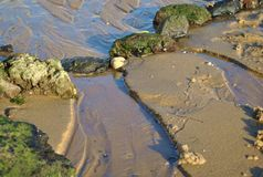 Stones on the sea beach stock photos