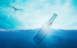 Water, Marine Mammal, Underwater, Sky Stock Photography