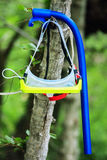 Water mask and breathing pipe hanging on the tree on green forest natural background. Diving accessories as sign of summer sport Royalty Free Stock Photography