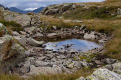Water on the meadow - Pyrenees Royalty Free Stock Photos