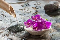 Water meditation for natural beauty Royalty Free Stock Image