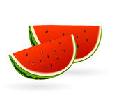 Water mellon slices. Illustrated slices of red water mellon fruits Stock Photo