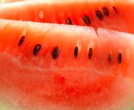 Water-melon. Juicy tasty pieces of a ripe water-melon Stock Image
