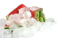 Water-melon Stock Photos