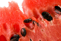 Water-melon. The part of a red mature water-melon photographed close up Royalty Free Stock Photo
