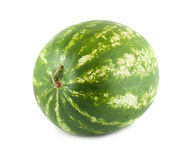 Water melon. Juicy water melon on white background Royalty Free Stock Photography