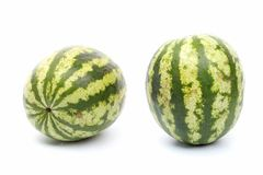 Water-melon Arkivfoton