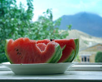 Water-melon. Parts of the Water-melon on a plate on a background of a landscape Royalty Free Stock Photography