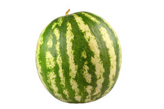 Water-melon. Whole watermelon isolated on white stock photos