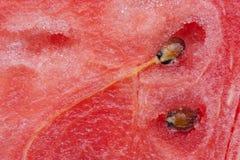 Water melon abstract Stock Photos
