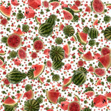 Water Melon background (on white) Royalty Free Stock Image