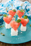 Water melon and feta Stock Photography