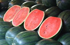 Water melon in the fruit market.  Stock Image