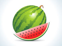 Water melon fruit with slice. Water melon fruit  with slice vector illustration Royalty Free Stock Photos