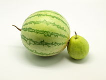 Water melon and guava. A water melon and a Chinese guava isolated on white background Royalty Free Stock Image