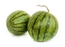 Water melon . Stock Photo