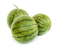 Water melon . Stock Image
