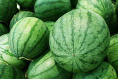 Water melon for sale royalty free stock images
