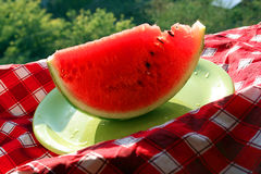 Water melon with seeds Stock Images